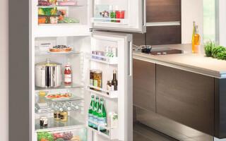 Какой холодильник лучше выбрать для дома — ТОП холодильников по цене